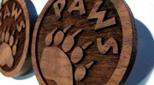 lazer wood